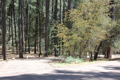 Ponderosa Campground | by camprrm