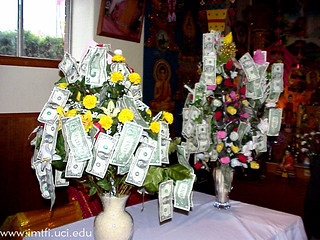 Money Trees | by imtfi