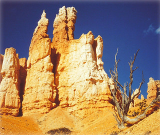 Miracle of Nature - Hoodoos in Queen's Garden - Bryce Canyon, Utah, USA | by Batikart