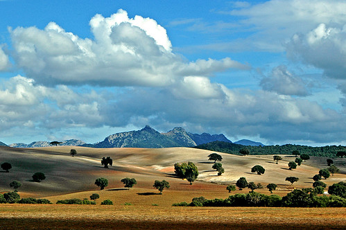 Andalusian landscape | by gornabanja