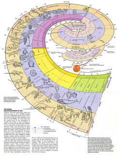 Origin & Development of Life Visual - Encyclopaedia Universalis | by visual think map
