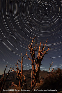 Bristlecone Pine Star Circle *Explored* | by Steven Christenson