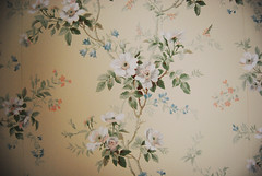 flowery wallpaper | by {Jessica Louise}
