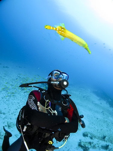 Cabo Verde | by Bigeye Bubblefish [  Addict  ]