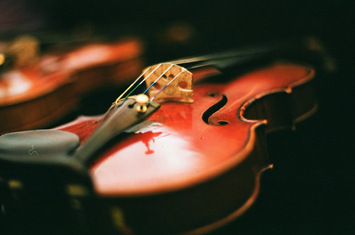 Violin | by mybigbro