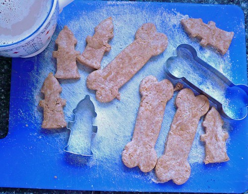 Making Dog Cookies Out Of Royal Canin Canned Food