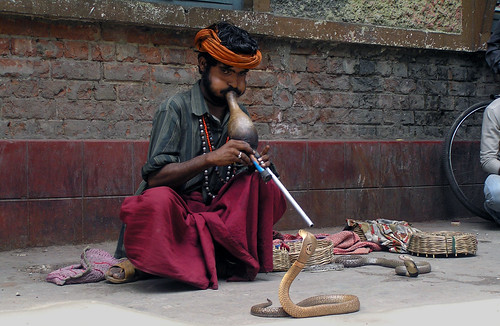 The snake charmer | by oum08