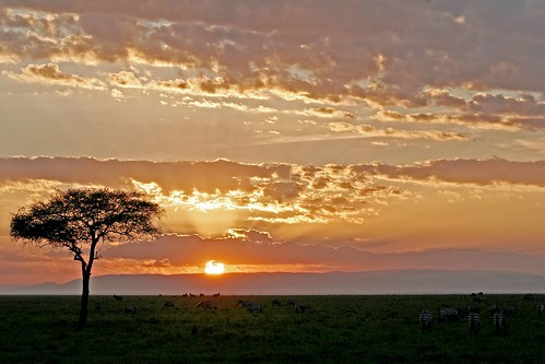 Mara Sunrise | by Picture Taker 2