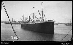 SS SUEVIC in Sydney | by Australian National Maritime Museum on The Commons