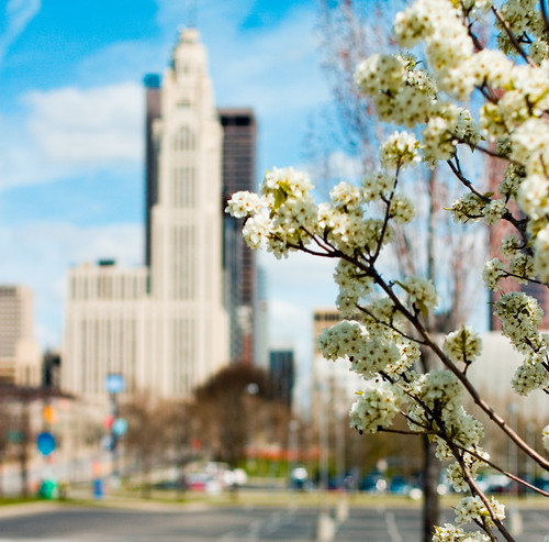 Spring in Columbus | by arimou0