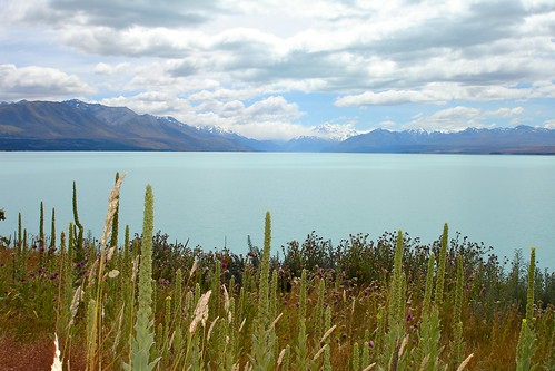 New Zealand Lake Tekapo | by Alex E. Proimos