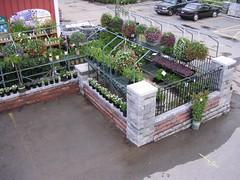 Image Result For Russells Garden Center