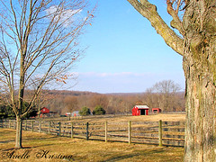 Winter Farm | Chester County | by *Arielle*