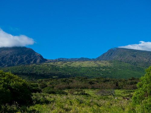Kaupo Gap, Haleakala National Park | by Conor Dupre-Neary