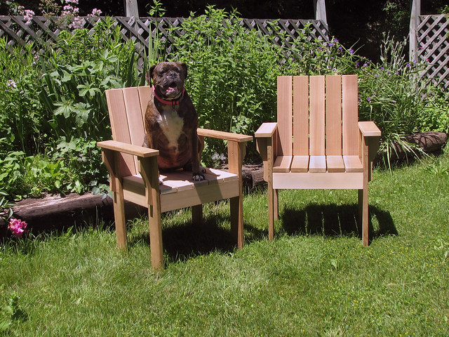 Cedar Chairs + Dog