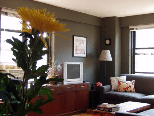 real homes dark green gray living room ralph lauren pai flickr