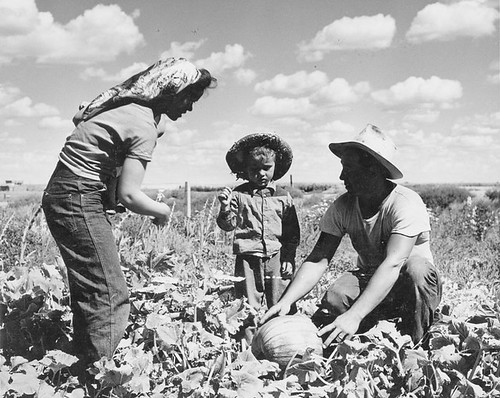 Sam Hauka Family On Their Farm | by Galt Museum & Archives on The Commons