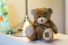 Bear 85mm