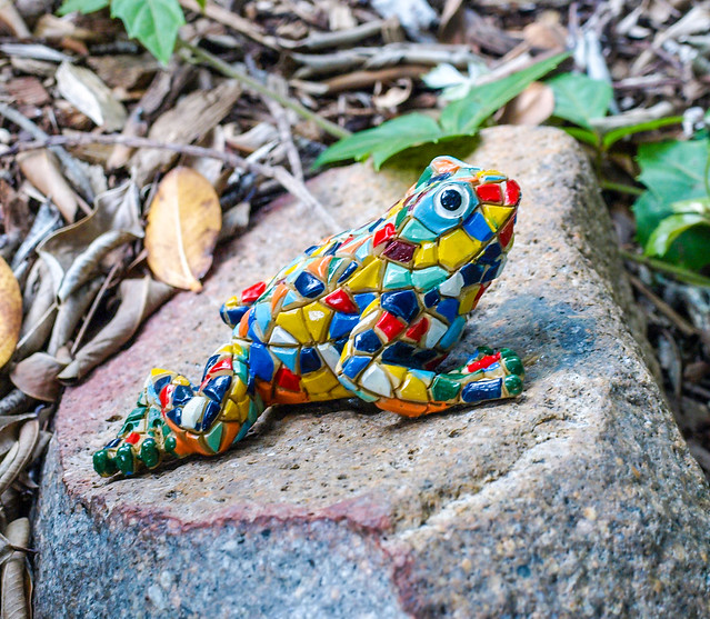 Hide 'n' Seek Children's Trail - Brisbane Botanic Gardens Mt Coot-tha