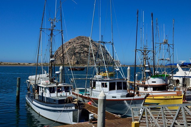 QUE VER EN EL BIG SUR CALIFORNIA MORRO BAY