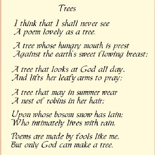My Mother's Favorite Poem. I Recited This At My Parents 50