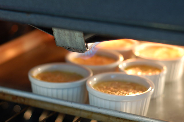 Caramelizing the sugar on the tops of the maple crème brûlée by Eve Fox the Garden of Eating blog, copyright 2014