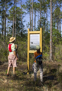 Wiregrass Trail Information Kiosk - Pine Glades Natural Area