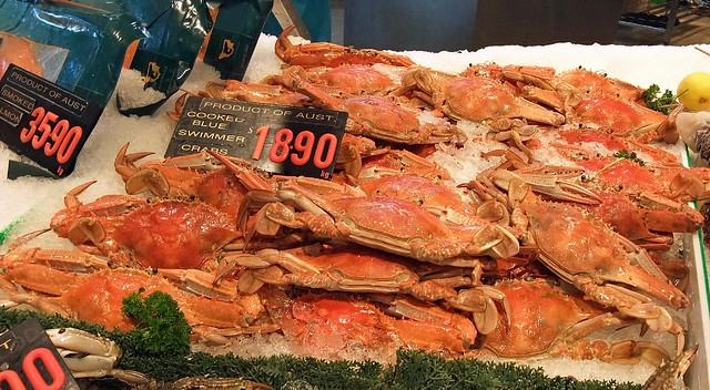 Sydney Fish Market (13)