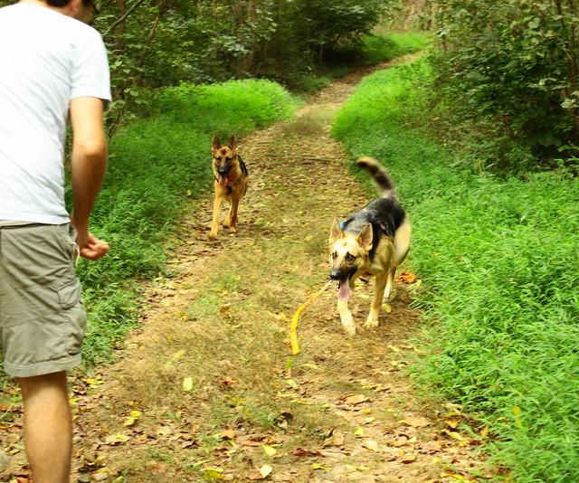 Mint Springs Valley Park hike