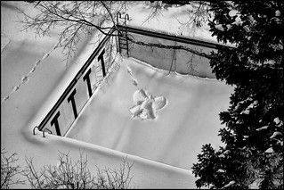 christmas holiday snow angel - saint paul, mn | by Dan Anderson.