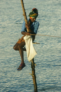 Stilt Fishing | by tim ellis