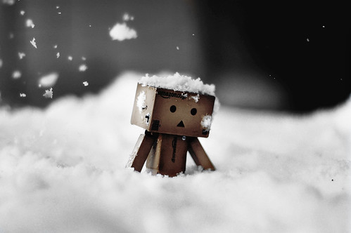 Danbo trudges to work | by Eleventh966