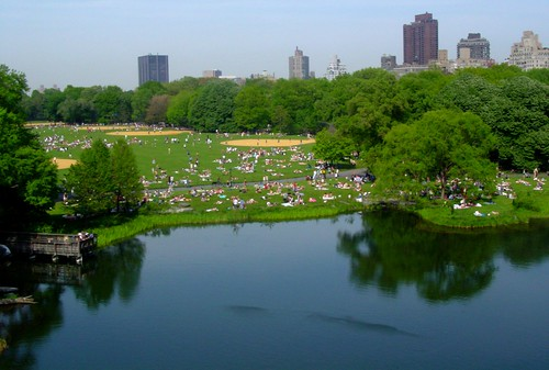 Central Park from the Belvedere Castle | by posixeleni
