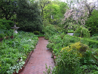 The Shakespeare Garden | by Brooklyn Botanic Garden