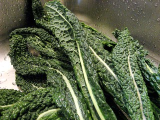 Cavolo Nero | by ataldredge