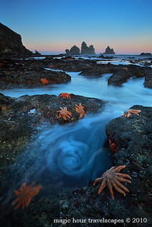 August 2010 Landscape - Starfish Swirl | by Kah Kit Yoong