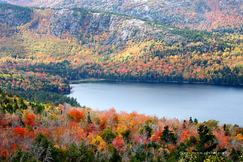 Autumn Foliage in Acadia National Park, #Maine | by Dana Moos