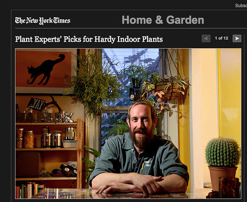 Uli Lorimer in the New York Times | by Brooklyn Botanic Garden