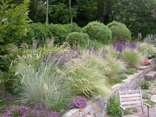 Mixed perennial planting various grasses stipa - Garden design using grasses ...