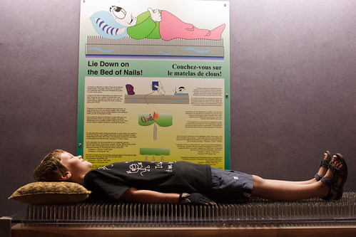 Bed of Nails | by Sharon Drummond