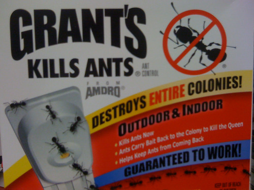 destroys entire colonies kills ants now ants carry bait flickr. Black Bedroom Furniture Sets. Home Design Ideas