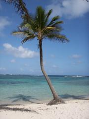 Îles de la Petite-Terre