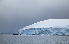 2010-11-23 Antarctica_7853