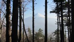 Kawaguchiko » Le mont Fuji, 2014