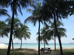 Parque Costa Este