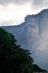 Salto Angel - Canaima