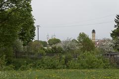 Cattedrale di San Francesco Saverio