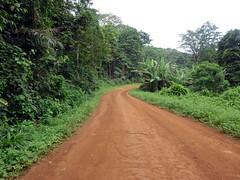 Dirt Road on Principe