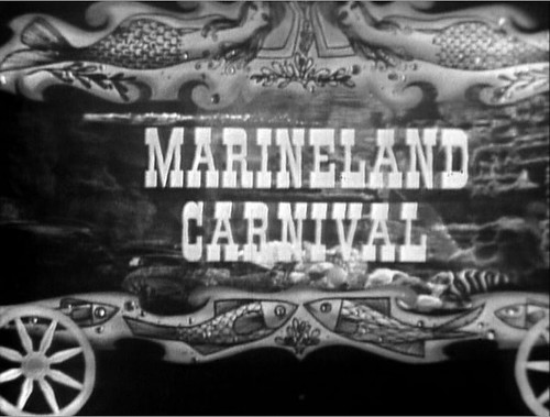 Marineland discount coupons 2019