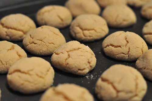 Peanut Butter Cookies | by Kristi @ TCRB